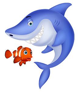 Shark_Blog